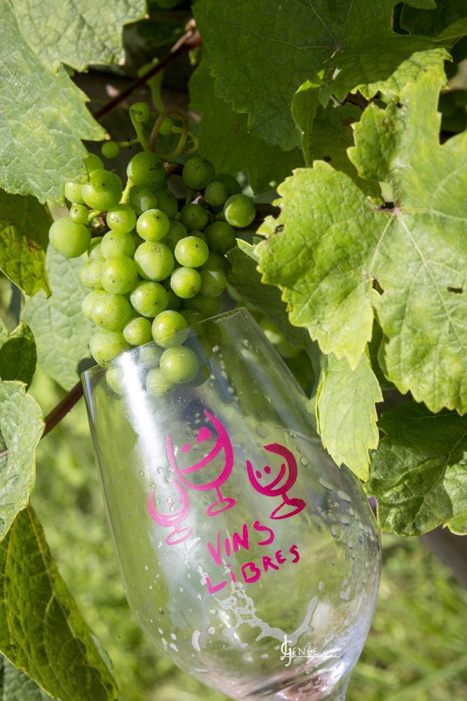 Salon des Vins libres 2021